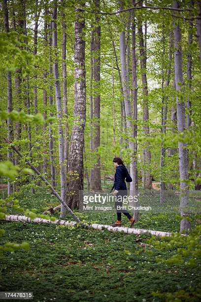 A woman walking along a fallen tree trunk in the woods. Balancing on the narrow piece of wood.