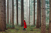 Woman Walking Along Wooded Road
