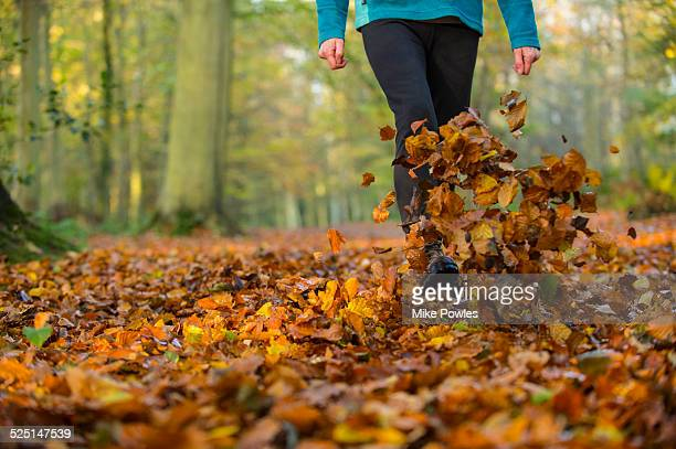 Woman walking and kicking up beech leaves, Norfolk