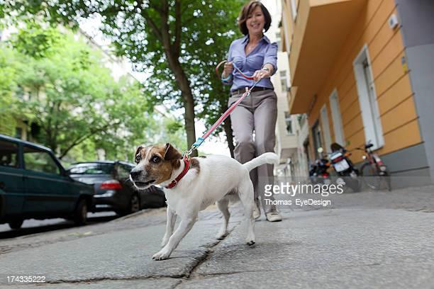 Frau zu Fuß Hund auf einer Straße in der Stadt