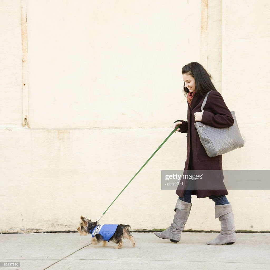 Woman walking dog on sidewalk : Stock Photo