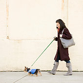 Woman walking dog on sidewalk