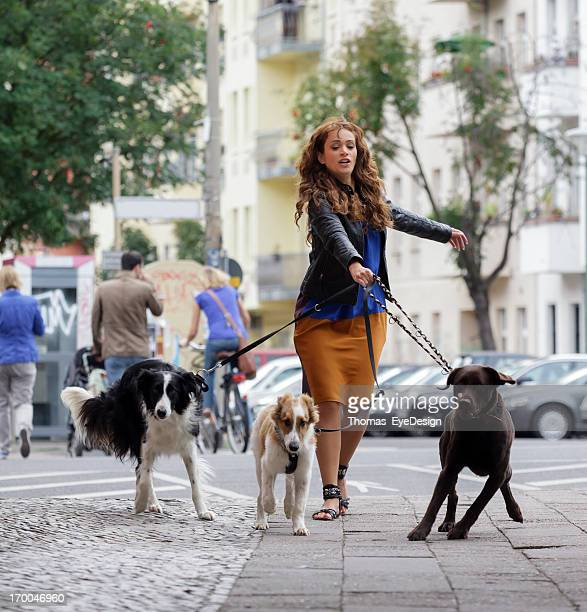 Woman Walking Dogs on a City Street