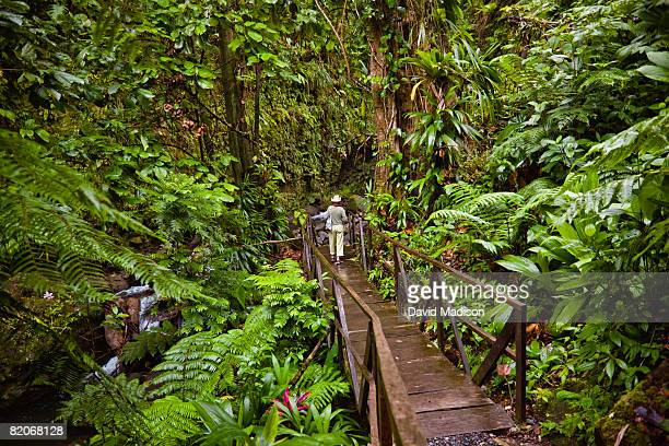 Woman walking down Jacko Steps to Layou River, Dominica.