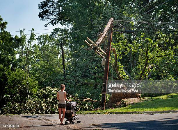 A woman walking her infant stops to consider a downed tree and broken telephone pole at the corner of Ellsworth drive and Springvale road in Silver...