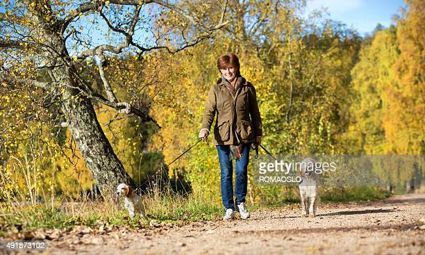 Woman walking her two Two English Setter dogs, Oslo Norway