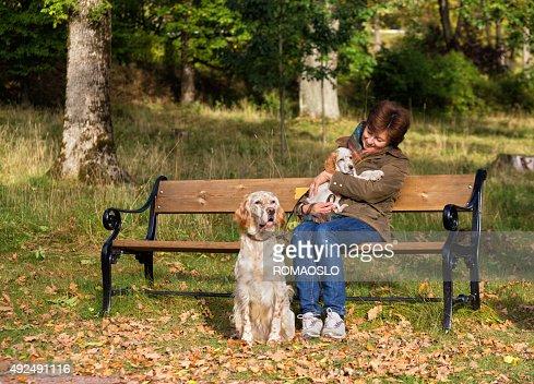 Donna cammina suo due due setter inglese cani oslo - Soleggiato in inglese ...