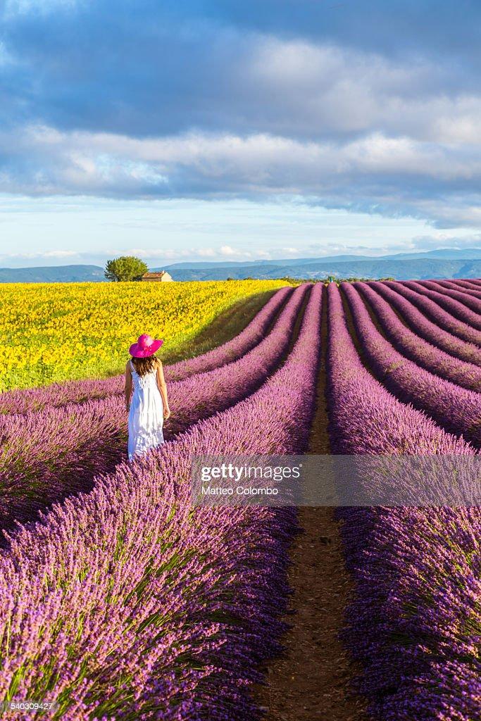 Woman walking in lavender fields in Provence
