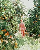 Woman walking in orange grove with basket.