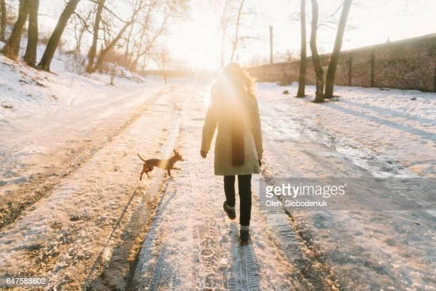 冬の公園で犬と一緒に歩いている女性