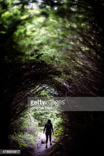 Woman walking through trees