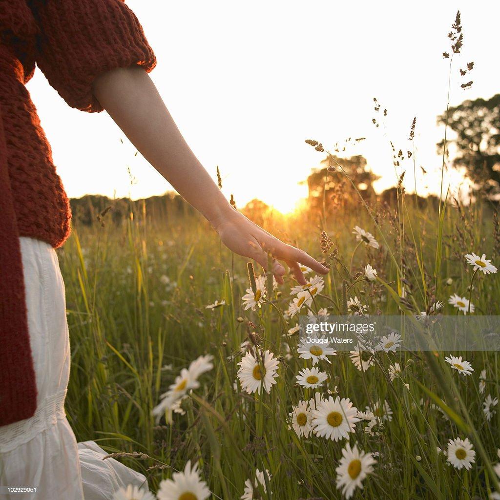 Woman walking through wild flower meadow. : Stock Photo