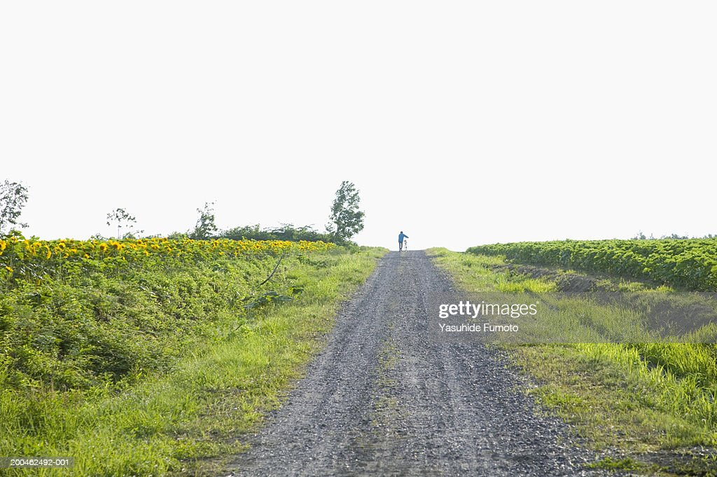 Woman walking with bicycle down country road : Stock Photo