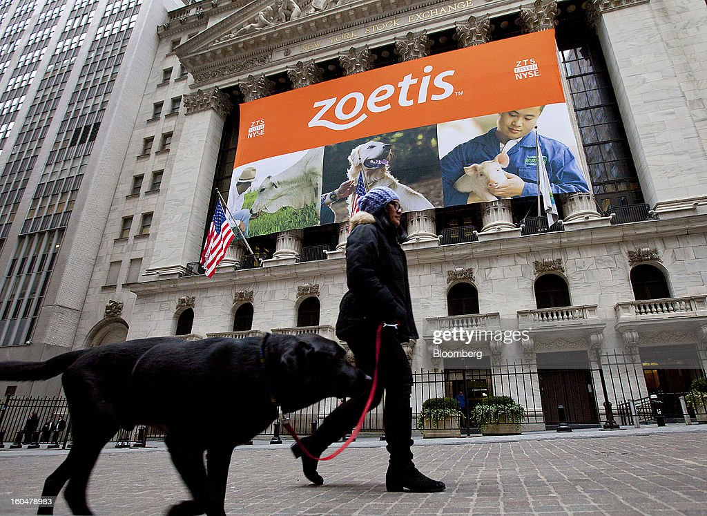 A woman walks a dog in front of the New York Stock Exchange (NYSE) in New York, U.S., on Friday, Feb. 1, 2013. Zoetis Inc., the animal-health company owned by Pfizer Inc., surged as much as 22 percent in its debut after raising $2.24 billion in its initial public offering, pricing the shares above the proposed price range. Photographer: Jin Lee/Bloomberg via Getty Images