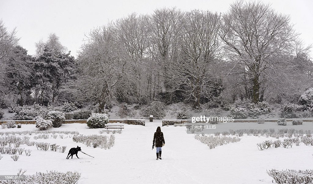 A woman walks a dog through a snow covered Rose Garden at The Arno in Birkenhead, northwest England, on January 21, 2013. Britain is braced for a continuation of the bad weather which has left closed schools and caused transport chaos in recent days, with several weather warnings in place.