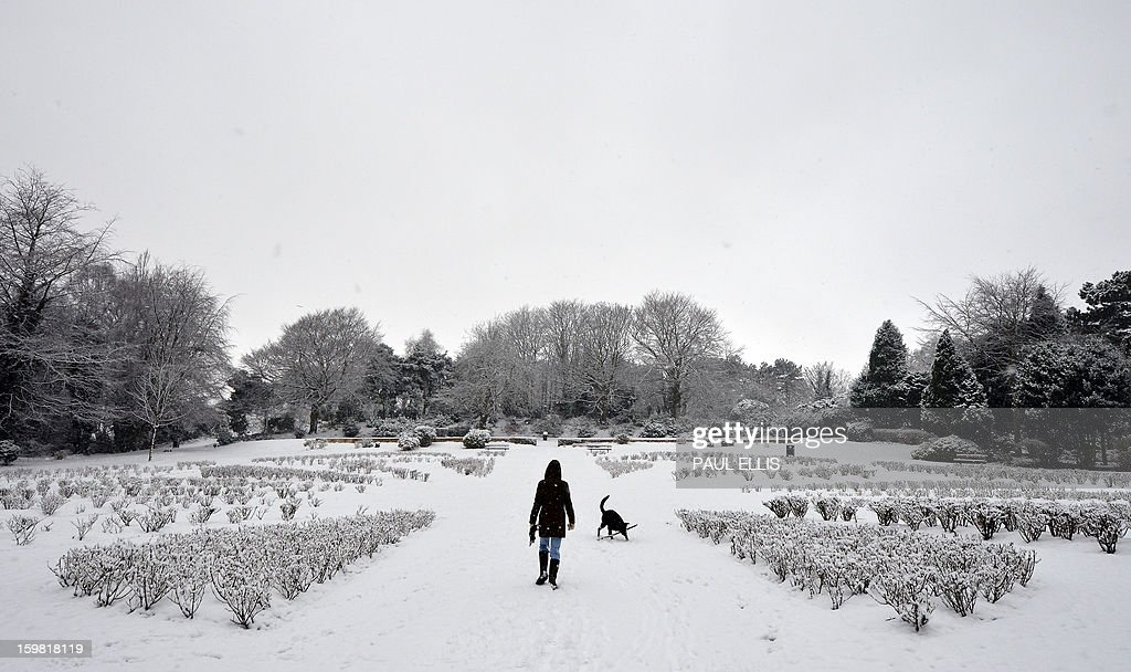A woman walks a dog through a snow covered Rose Garden at The Arno in Birkenhead, northwest England, on January 21, 2013. Britain is braced for a continuation of the bad weather which has left closed schools and caused transport chaos in recent days, with several weather warnings in place. AFP PHOTO / PAUL ELLIS