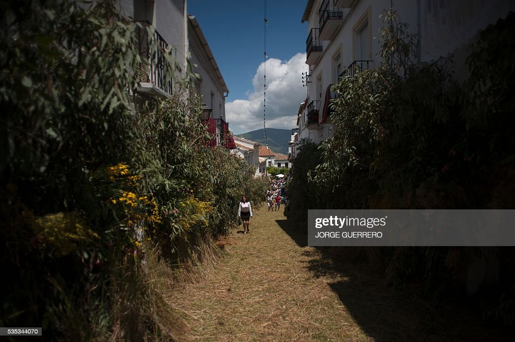 A woman walks a street covered with grass during the Corpus Christi celebrations in El Gastor, southern Spain on May 29, 2016. The village of El Gastor celebrate the feast of Corpus Christi (or Body of Christ in Latin) covering the streets and facades of houses with branches of trees and grass. / AFP / JORGE