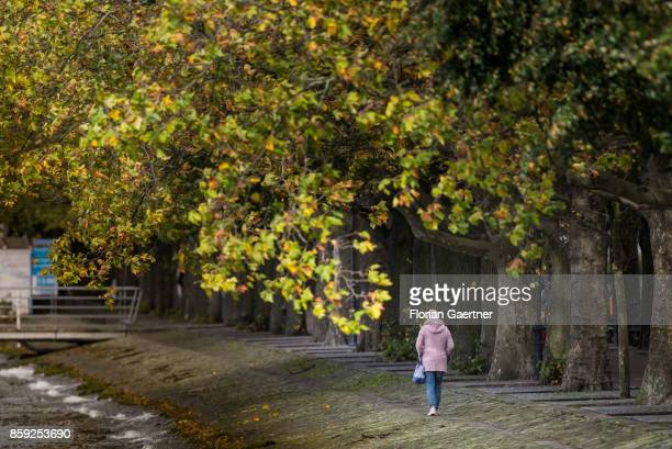 A woman walks along the lake Tegeler See on October 07 2017 in Berlin Germany