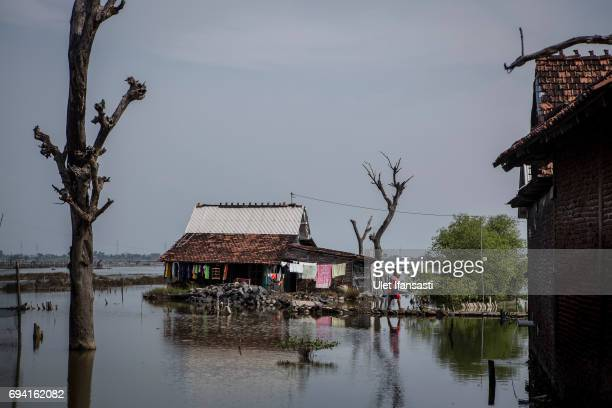 A woman walks from a house sits surrounded by rising sea levels at Timbulsloko village on June 7 2017 in Demak Indonesia Indonesia is known to be one...