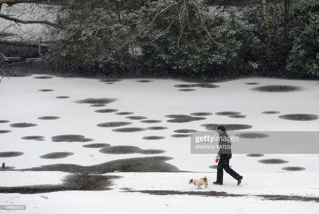 A woman walks her dog as snow falls in Bramhall Park in Stockport, northern England, on January 18, 2013. Snow swept across Britain on Friday, forcing airports to cancel dozens of flights and more than 2,000 schools to close.