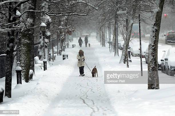 A woman walks her dog near Prospect Park in Brooklyn on March 5 2015 in New York City New York City and much of the Northeast is experiencing one to...