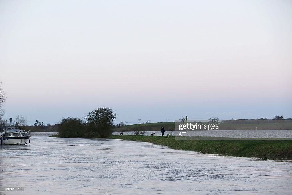 A woman walks her dog on a patch of high ground near floodwaters in Tewkesbury on November 25, 2012. A woman was killed by a falling tree in southwest England, police said, as severe flood warnings were introduced in parts of the country already soaked by rain and battered by strong winds. AFP PHOTO / JUSTIN TALLIS