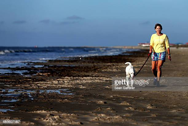 A woman walks her dog on the beach days after a BP announcement that it is ending its 'active cleanup' on the Louisiana coast from the Deepwater...