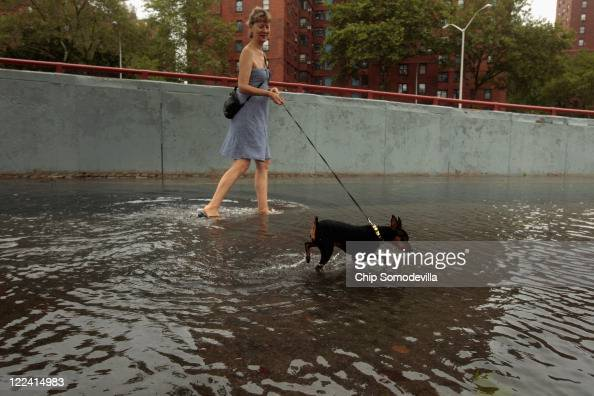 A woman walks her dog through flood waters along the East River Bikeway after Hurricane Irene dumped more than six inches of rain August 28 2011 in...