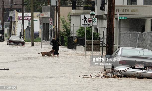 A woman walks her dog through rising waters and stranded cars in the evacuated downtown Calgary Alberta Canada June 21 2013 Flooding forced the...