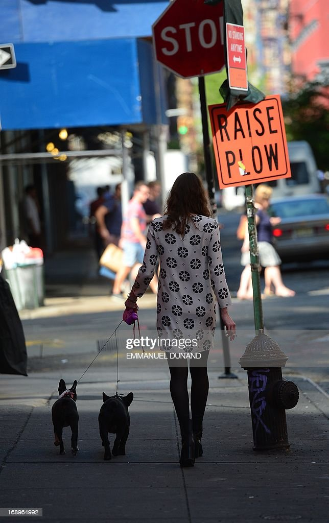 A woman walks her dogs in New York, May 17, 2013. AFP PHOTO/Emmanuel Dunand