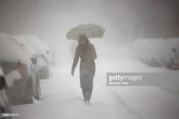 A woman walks in blizzardlike conditions on January 23 2016 in the Brooklyn borough of New York City The Northeast and parts of the South are...