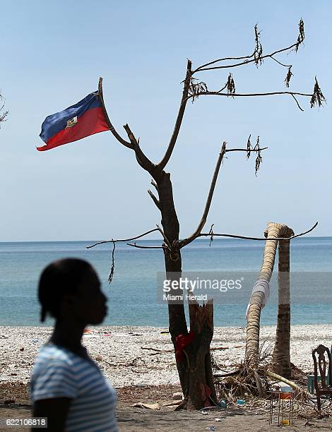 A woman walks past a Haitian flag tied to a battered tree near Port Salut Haiti on October 9 2016