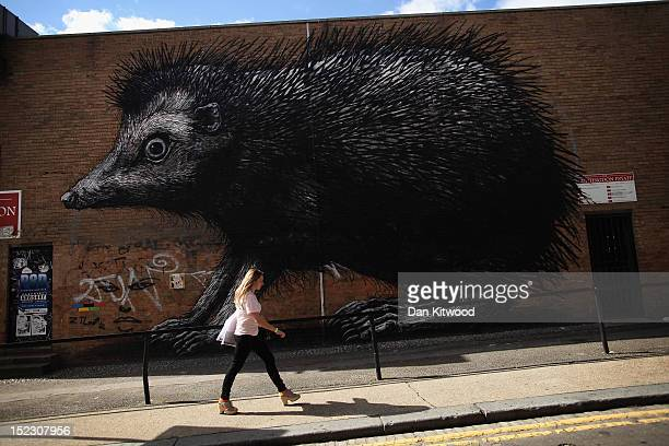 A woman walks past a large piece of street art near Brick Lane on September 18 2012 in London England