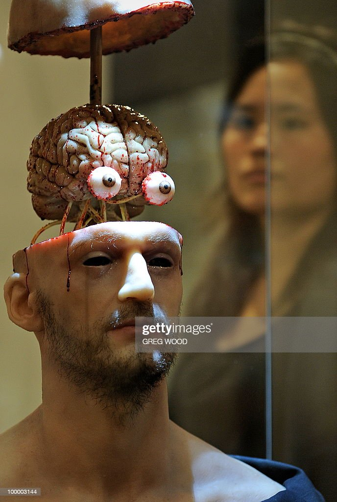 A woman (R) walks past a model of 'The Head and Cranial Nerves', which forms part of the Leonardo da Vinci exhibition Da Vinci Secrets 'Anatomy to Robots' at the Sydney Town Hall on May 20, 2010. The exhibition which runs until August 2, features in excess of 90 exhibits including life like anatomical models and body parts, interactive automatons and robotics all based on his drawings, as well as reproductions of his masterpieces. AFP PHOTO / Greg WOOD