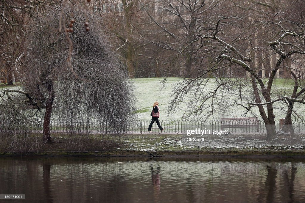 A woman walks past snow-covered trees in St James's Park on January 14, 2013 in London, England. Several counties in England have received light snowfall overnight. Met Office forecasters are warning of a very cold week throughout the UK and heavier snow predicted to fall across much of the country.