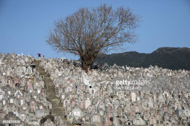 A woman walks past tombstones at a cemetery ahead of the Ching Ming Festival or gravesweeping day in Hong Kong on April 2 2017 Visiting the graves of...