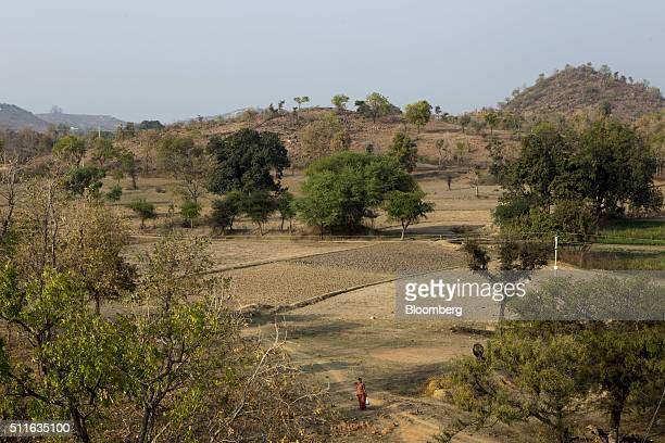 A woman walks through a field in the village of Nagara in Tikamgarh Madhya Pradesh India on Friday Feb 8 2016 Rising discontent in rural India is...
