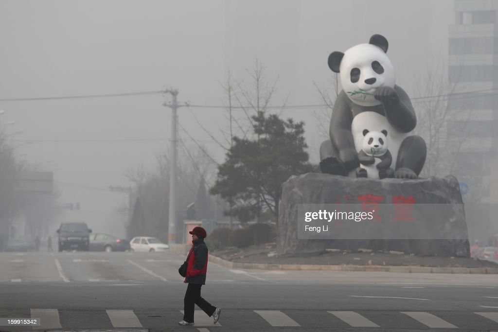 A woman walks through a panda sculpture during severe pollution on January 23, 2013 in Beijing, China. The air quality in Beijing on Wednesday hit serious levels again, as smog blanketed the city.