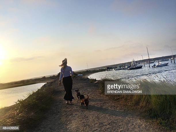 A woman walks with dogs to the beach at sunrise August 18 2015 in Edgartown Massachusetts on Martha's Vineyard AFP PHOTO/BRENDAN SMIALOWSKI