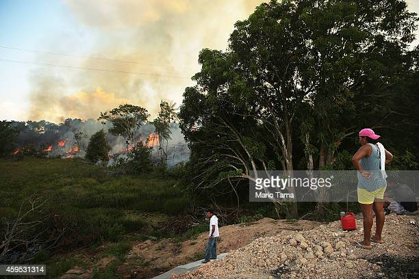 A woman watches standing by a gas can as a fire burns along a highway in a deforested section of the Amazon basin on November 22 2014 in Ze Doca...