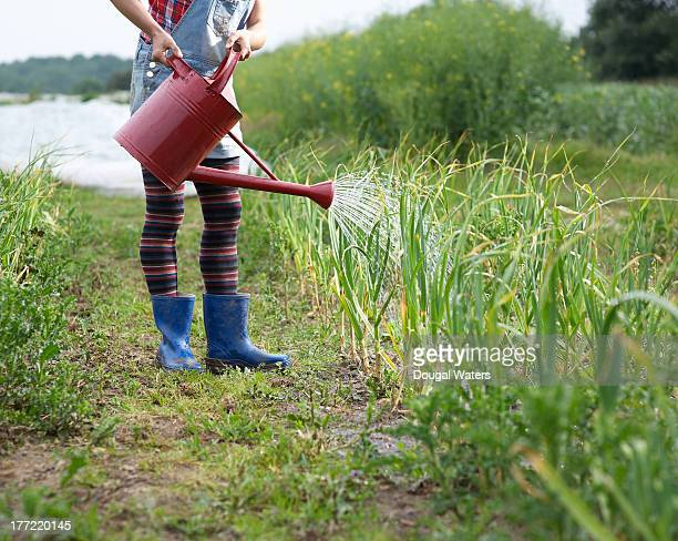 Woman watering crops on farm.
