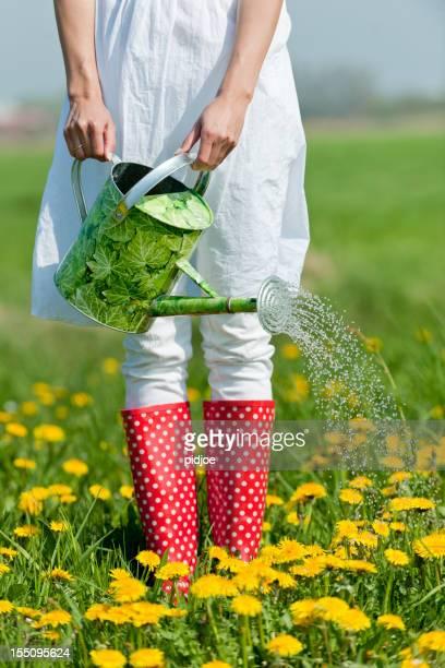 Femme arroser des fleurs de Prairie