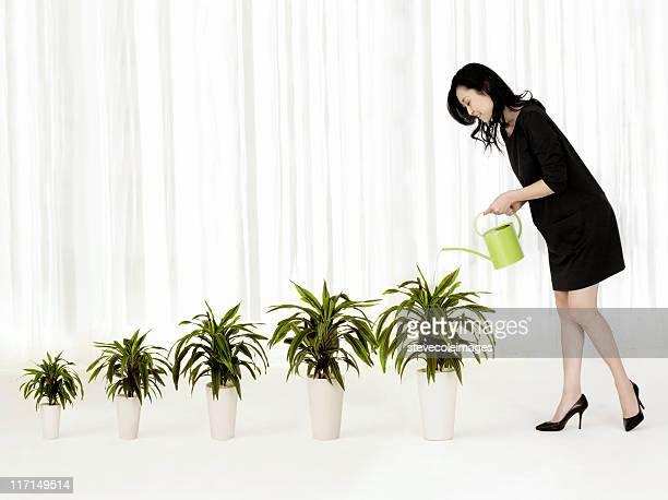 Frau gießen wachsenden Houseplants