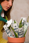 Woman watering money plant