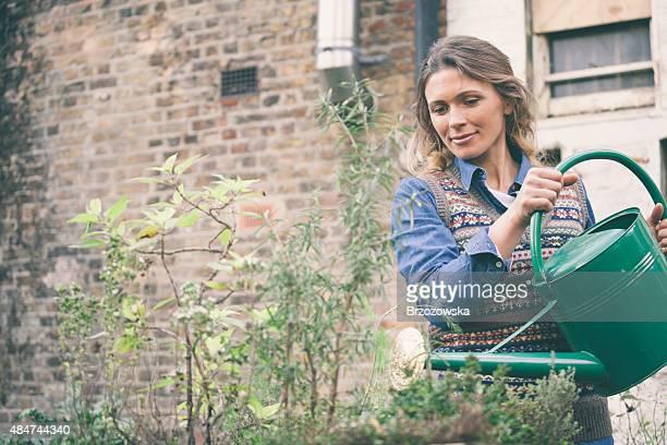 Donna deliziosi piante nel suo giardino urbano (Londra, Regno Unito).