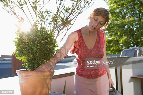 A woman watering plants on a rooftop garden