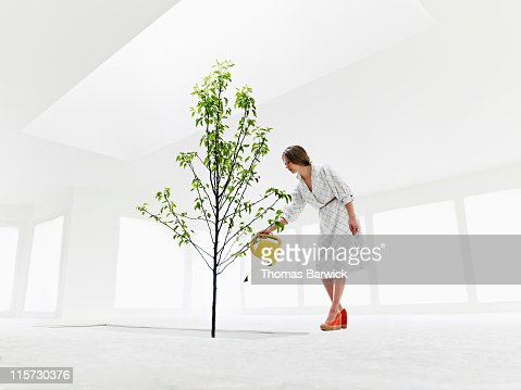 Woman watering tree growing from stairwell : Foto stock