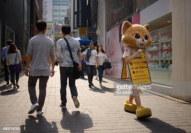 A woman wearing a cat costume promoting a cafe walks down a street in a popular Myeondong shopping district of Seoul on May 13 2014 South Korea's...