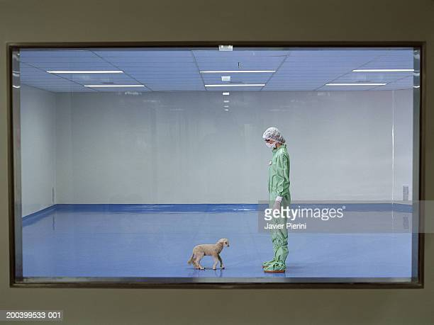 Woman wearing boiler suit and mask standing in room with lamb