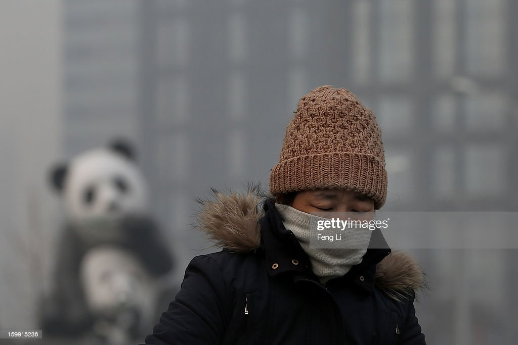 A woman wearing the scarf ride a bicycle through a panda sculpture during severe pollution on January 23, 2013 in Beijing, China. The air quality in Beijing on Wednesday hit serious levels again, as smog blanketed the city.
